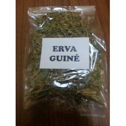Erva da Guiné