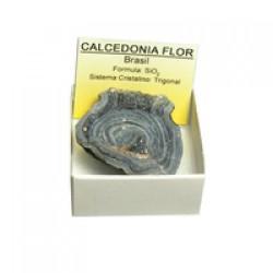 Calcedónia Flor