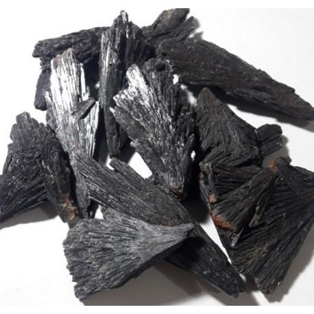 Taramita - Vassoura da Bruxa