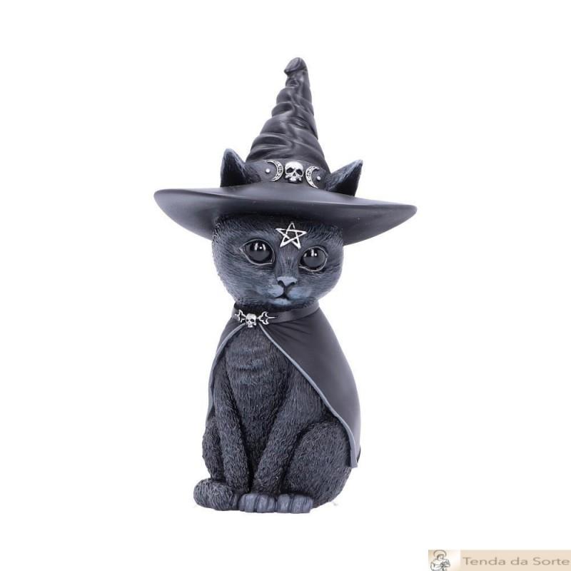 Gato Preto com Chapéu Bruxa